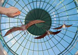 Pterosaurs Ceiling by Stephanie Wallace Photography, used under the CC BY-NC-ND license_sm